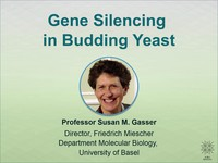Gene silencing in budding yeast