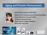 Aging and protein homeostasis | Video tutorial by HSTalks