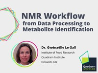 NMR workflow from data processing to metabolite identification