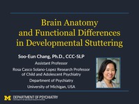 Brain anatomy and functional differences in developmental stuttering