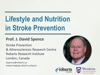 Lifestyle and nutrition in stroke prevention
