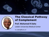 The classical pathway of complement