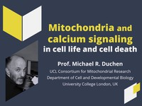 Mitochondria and calcium signaling in cell life and cell death