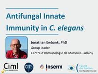 Antifungal innate immunity in C. elegans