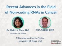 Recent advances in the field of non-coding RNAs in cancer