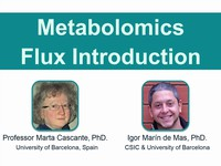 Metabolomics flux introduction