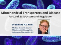 Mitochondrial transporters and disease - structure and regulation