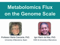 Metabolomics flux on the genome scale