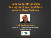 Guidance for responsible testing and implementation of gene-drive systems