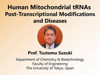 Human mitochondrial tRNAs: post-transcriptional modifications and diseases