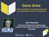 Gene drive: What is possible at the population level with currently-available molecular components?
