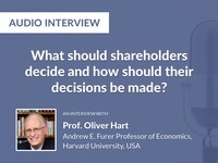 What should shareholders decide and how should their decisions be made?