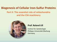 Biogenesis of cellular iron-sulfur proteins: the essential role of mitochondria and the CIA machinery