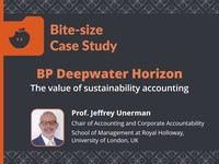 BP Deepwater Horizon: the value of sustainability accounting