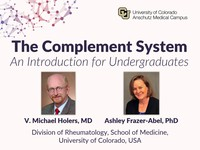 The complement system - an introduction for undergraduates