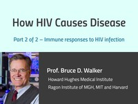 How HIV causes disease 2: immune responses to HIV infection