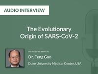 The evolutionary origin of SARS-CoV-2