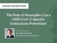 The role of Neuropilin-1 as a SARS-CoV-2-specific endocytosis potentiator