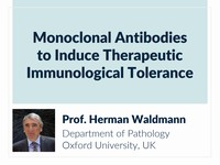 Monoclonal antibodies to induce therapeutic immunological tolerance
